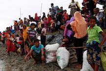 म्यांमार से 5,82,000 रोहिंग्या पहुंचे बांग्लादेश, हजारों सीमा पर फंसे हैं: UN