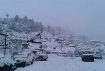 उत्तराखंड में इस साल की पहली बर्फबारी, कई वाहन फंसे
