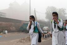 दिल्ली में बढ़ते प्रदूषण को लेकर एनजीटी सख्त, 48 घंटे में राज्य सरकार से मांगा जवाब