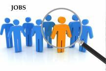 इस विभाग में 10वीं पास के लिए सरकारी नौकरी, ऐसे करें आवेदन