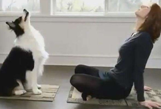 मालकिन को देखकर योग करना सीखा ये DOG, देखें वीडियो