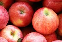 रोजाना सेब खाने वाले हो जाए सावधान, हो सकती हैं ये बीमारियां