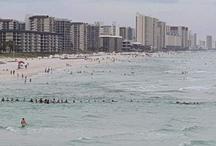 समंदर में डूब रहा था परिवार, जान बचाने के लिए लोगों ने अपनाया अनोखा तरीका