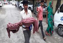 गोरखपुर ट्रेजडीः DM ने पेश की रिपोर्ट, इस वजह से गई हुई मासूमों की मौत
