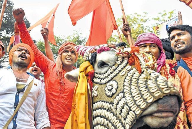 महाराष्ट्र: VHP ने बनाई अपनी गौरक्षक सेना, जारी करेगा आईडी कार्ड