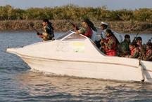 बीएसएफ ने पाक से आ रही 21 संदिग्ध नावों को पकड़ा, 5 गिरफ्तार