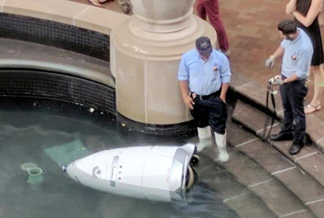 अमेरिका: रोबोट ने पानी में कूदकर की आत्महत्या, वजह जानकर रह जाएंगे हैरान