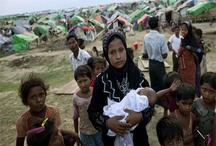 रोहिंग्या मुसलमानों पर भारत का UN को करारा जवाब, क्या UN दोबारा कुछ कहेगा