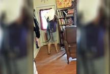 वायरल वीडियो: महिला ने जहरीले सांप को इस तरह सिखाया सबक, देखकर लोग हुए हैरान