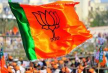 'भाजपा को 'विकास', 'सुशासन के एजेंडे' और 'न्यू इंडिया' की संकल्पना पर फिर मिलेगा जनादेश'