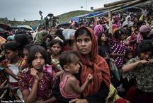 UNHCR कार्ड धारक रोहिंग्या शरणार्थियों का आधार कार्ड होगा रद्द