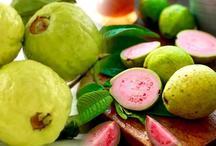 सर्दियों में अमरूद खाने के फायदे, जानेंगे तो आप भी रोज खाएंगे