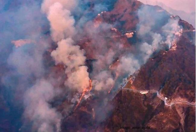 त्रिकुटा की पहाड़ियों में आग के बाद वैष्णो धाम की यात्रा फिर बहाल, यात्रियों ने ली राहत की सांस