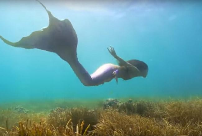 VIDEO: सिर्फ कहानियों में ही नहीं असल जिंदगी में भी होती हैं जलपरियां, सबूत है ये वीडियो