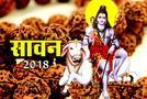 Sawan 2018: भगवान शिव के आंसुओं से उत्पन्न हुए रुद्राक्ष के बारे में सब कुछ जानिए
