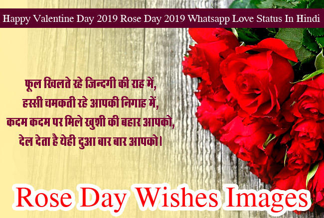 Happy Rose Day Images wishes HD Photo 6
