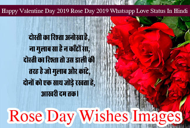 Happy Rose Day Images wishes HD Photo 7