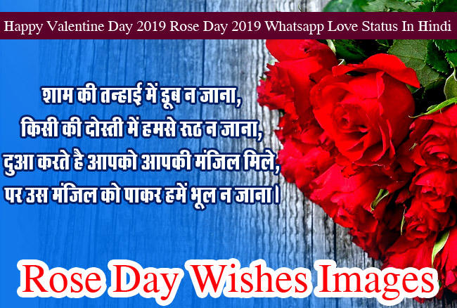 Happy Rose Day Images wishes HD Photo 9